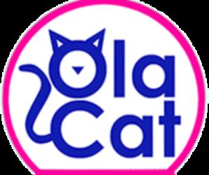 Ola Cat Arena para Gatos